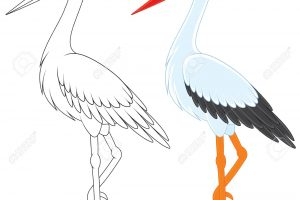 storch clipart 2