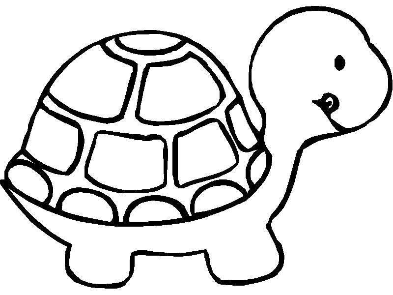 Tortue clipart 10 clipart station - Clipart tortue ...