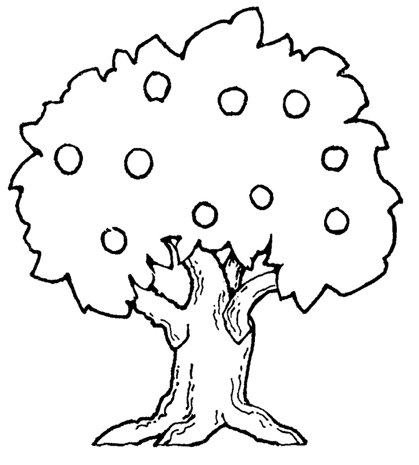 Trees Clipart Black And White 1 Clipart Station