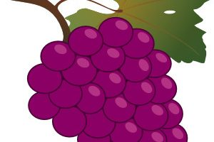 violet objects clipart