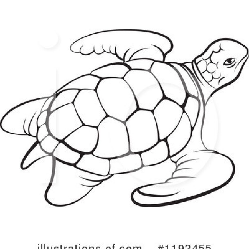 Black and white sea turtle clipart 5 » Clipart Station