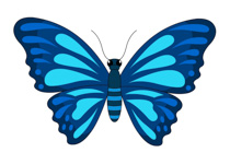 blue butterfly full wings clipart