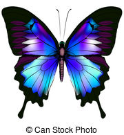 butterfly clipart images