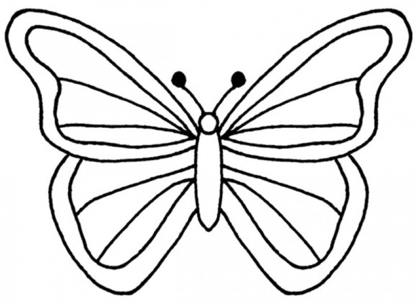 Butterfly outline. Clip art clipartscopng