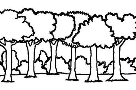 Forest Tree Clip Art Black and White