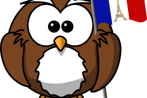 funny owl clipart 1