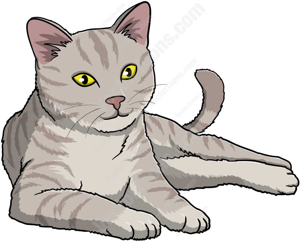 Grey cat with yellow eyes lying down and looking ahead ... (1023 x 822 Pixel)
