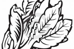 leafy vegetables clipart black and white 4