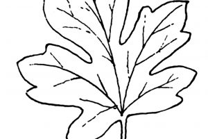leaves black and white clipart 4