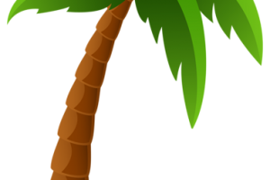 palm tree clipart png