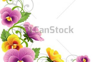 pansy clipart 5