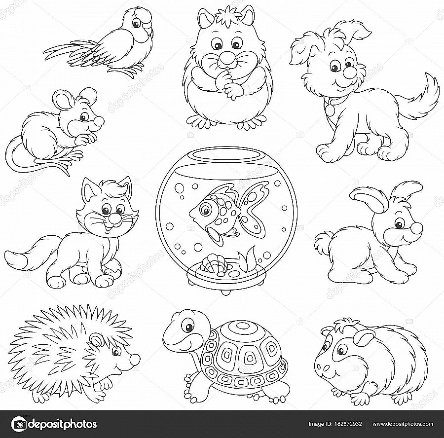 Cat And Kitten Clipart Black And White Awesome Set Pets Including