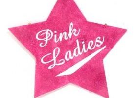 pink lady clipart 2