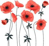 poppies clipart 5