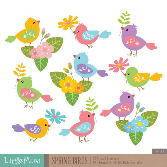 Birds spring. Clipart station