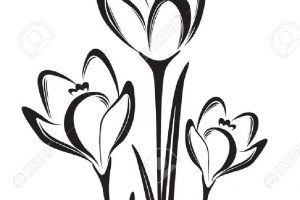 spring flowers black and white clipart 2
