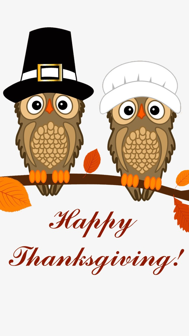 Thanksgiving owl. Clipart station