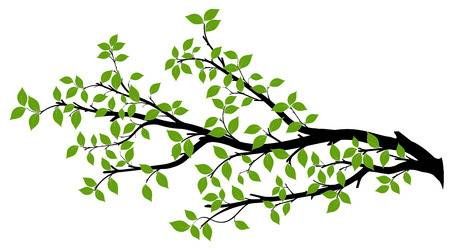 Tree Branch Clipart 1 Clipart Station