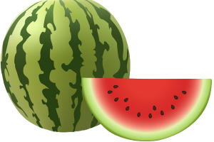 watermelon clipart png 1