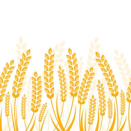 Wheat field illustration, Wheat , Wheat transparent background PNG clipart  | HiClipart