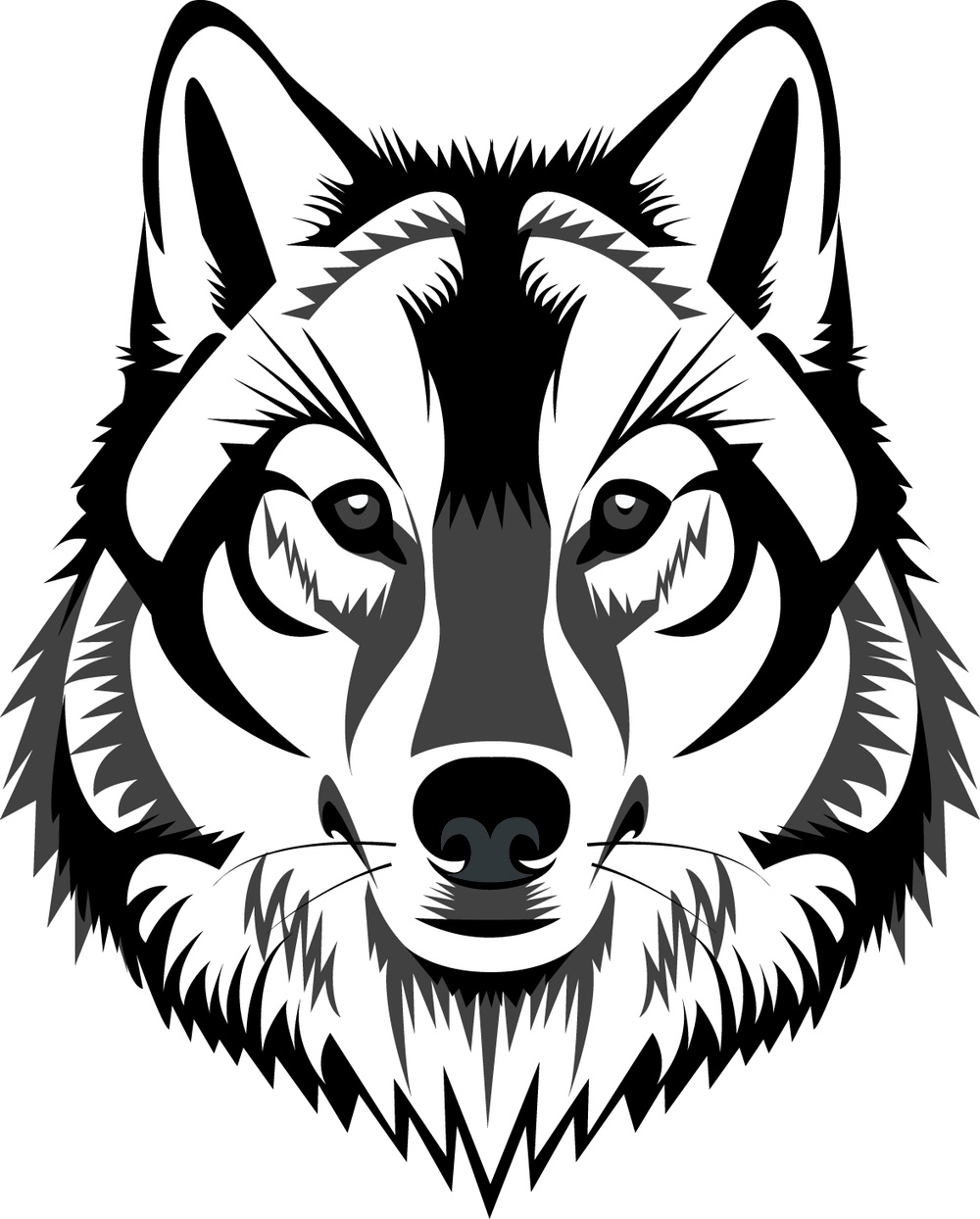 Wolf head. White clipart pencil and