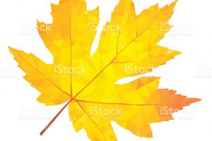 yellow leaf clipart 2