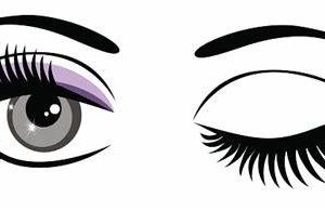 eyelashes pictures clipart 1