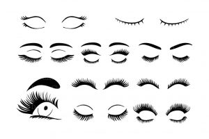 eyelashes pictures clipart 4