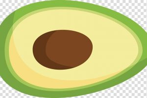 avocado shape clipart 2