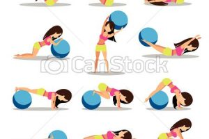 exercise ball clipart 1