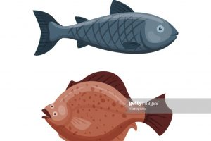 funny clipart swimming 6