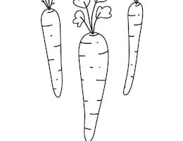outline carrot clipart black and white 4