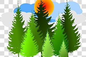row of christmas trees clipart 1