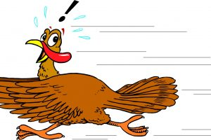 turkey no feathers clipart free 4