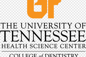 university of tn clipart 2